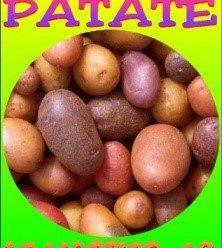 Fête de la Patate à Le Mottier
